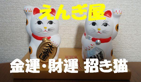 twin-cat.jpg