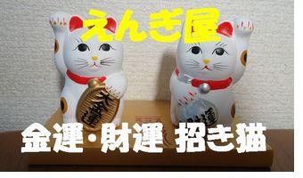 twin-cat1.jpg